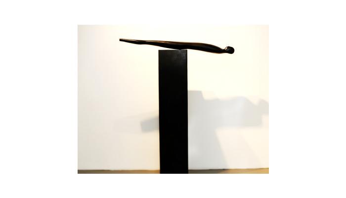 Oliviero Rainaldi – Argonauta, 2011