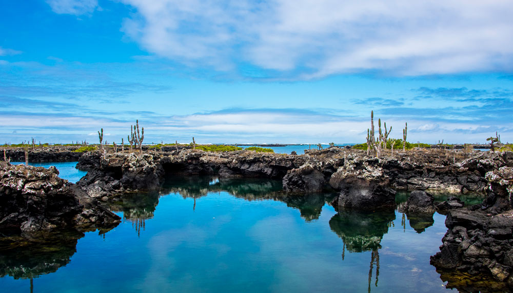 Reflection pools in Galapagos