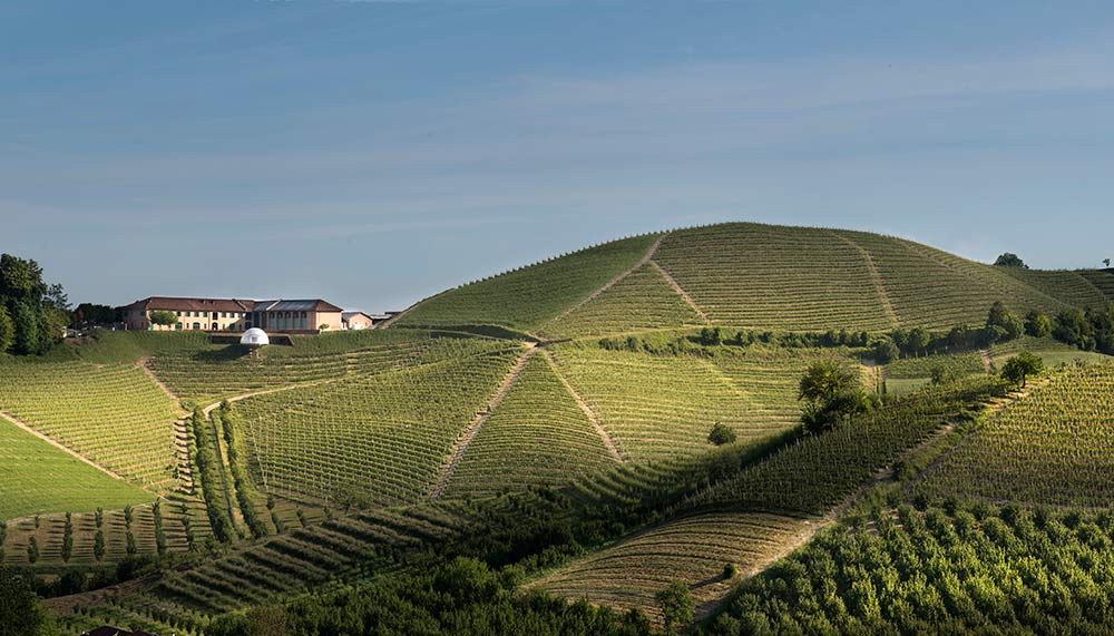 Monsordo Bernardina, Vineyards in Italy
