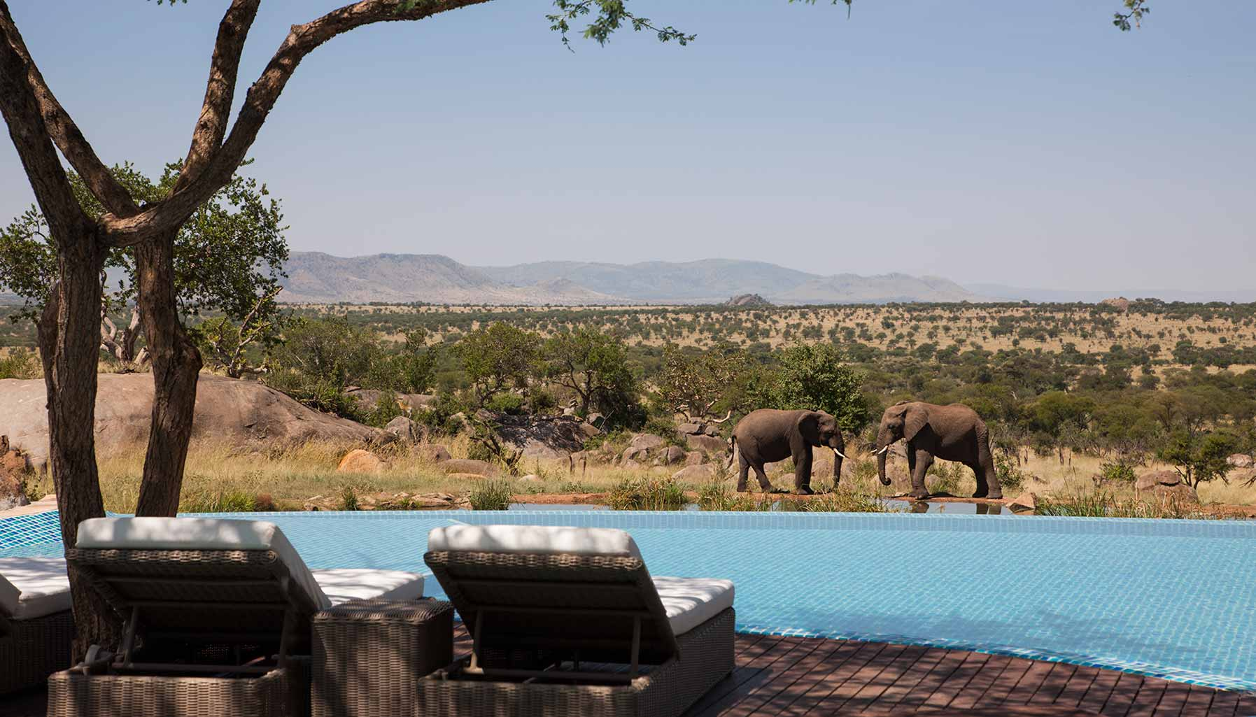 hyper-local experiences, Four Seasons Safari Lodge Serengeti