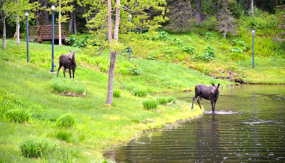 Alyeska Resort, Alaska, USA
