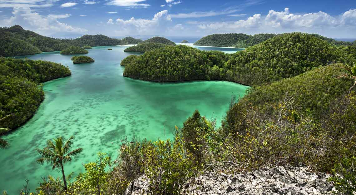 Luxury Cruise Charters - Raja Ampat