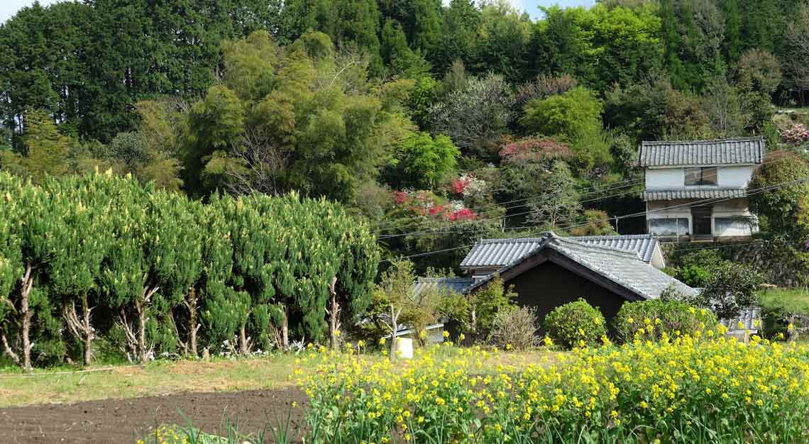 Walk Japan's Kunisaki Tours