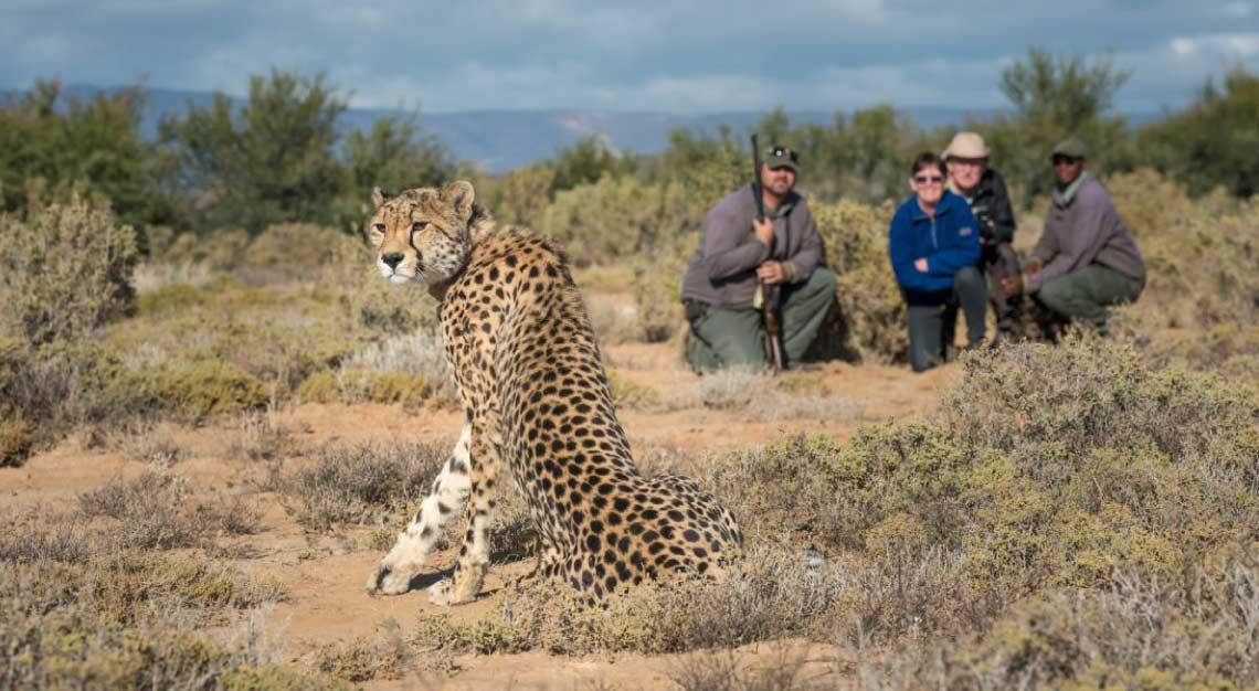 Sabona Wildlife Reserve, Cape Town, South Africa