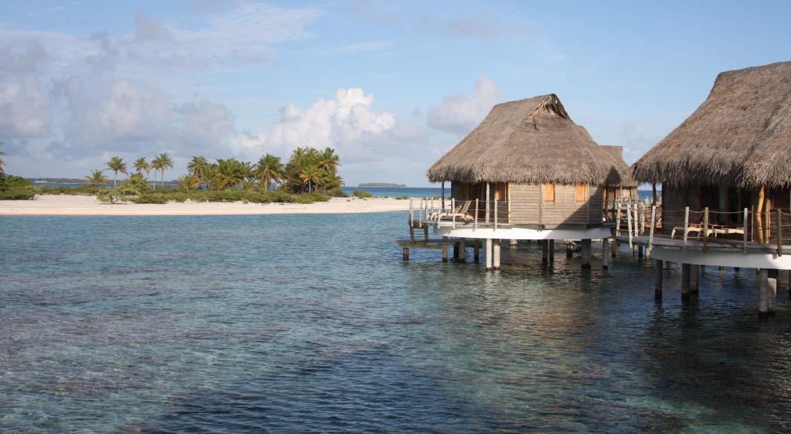 desert island survival