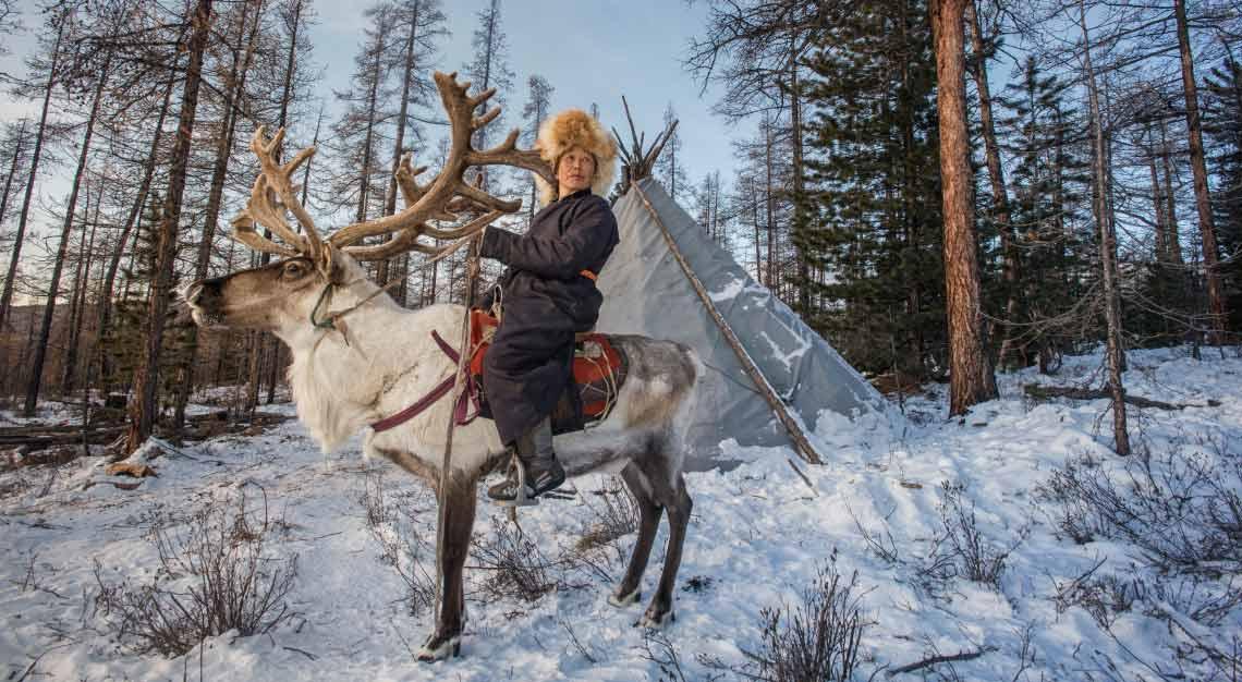 Mongolia Reindeer Tsaatan