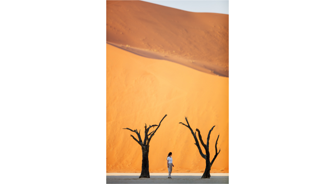Camelthorn-trees-and-dunes-in-Deadvlei-in-Namibia