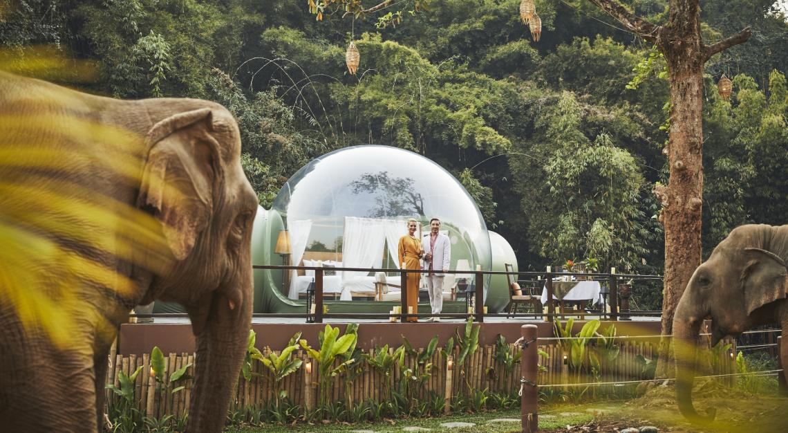 Anantara Golden Triangle Elephant Camp & Resort_Jungle Bubble