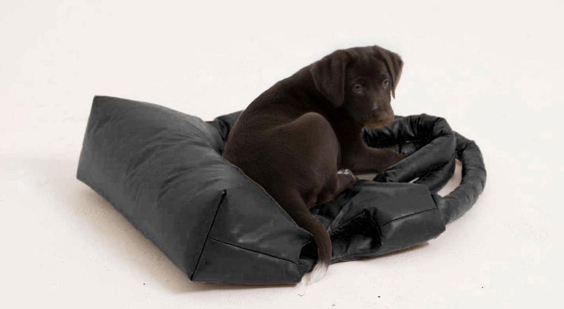 KASSL Editions dog bag